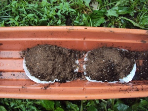 Image of dirt being place on coffee filters in window box first